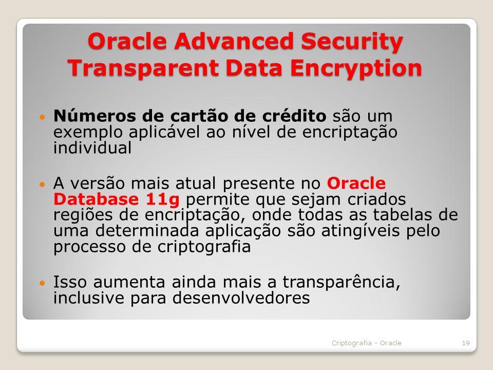 Oracle Advanced Security Transparent Data Encryption Números de cartão de crédito são um exemplo aplicável ao nível de encriptação individual A versão