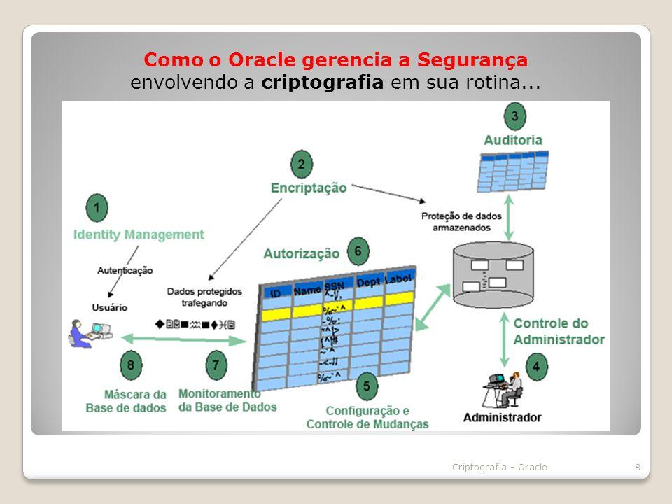 Como o Oracle gerencia a Segurança envolvendo a criptografia em sua rotina... 8Criptografia - Oracle