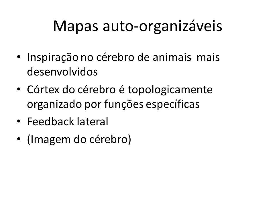 Mapas auto-organizáveis Inspiração no cérebro de animais mais desenvolvidos Córtex do cérebro é topologicamente organizado por funções específicas Fee