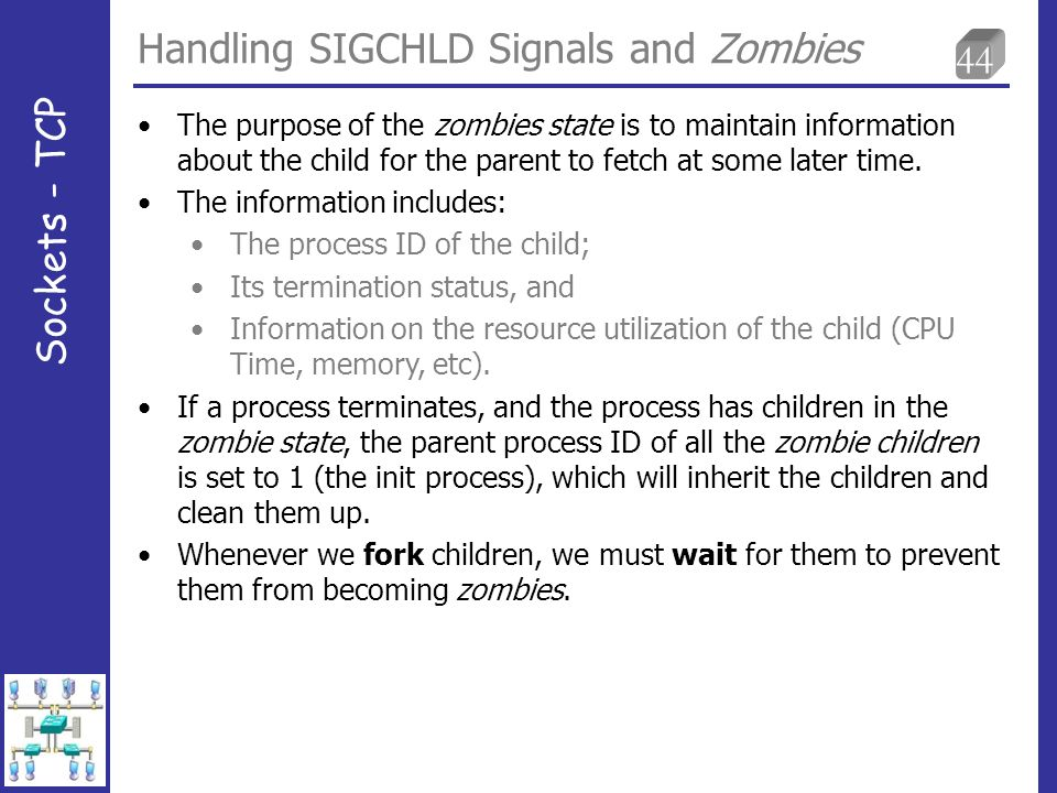 44 Handling SIGCHLD Signals and Zombies Sockets - TCP The purpose of the zombies state is to maintain information about the child for the parent to fetch at some later time.