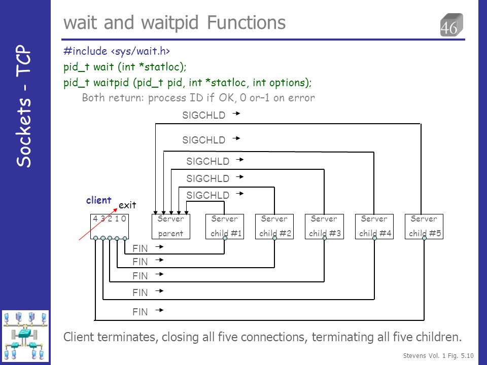 46 wait and waitpid Functions #include pid_t wait (int *statloc); pid_t waitpid (pid_t pid, int *statloc, int options); Both return: process ID if OK,