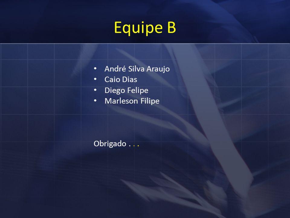 Equipe B André Silva Araujo Caio Dias Diego Felipe Marleson Filipe Obrigado...