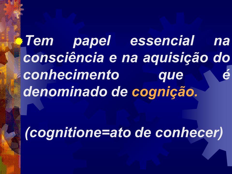 Tem papel essencial na consciência e na aquisição do conhecimento que é denominado de cognição. (cognitione=ato de conhecer)