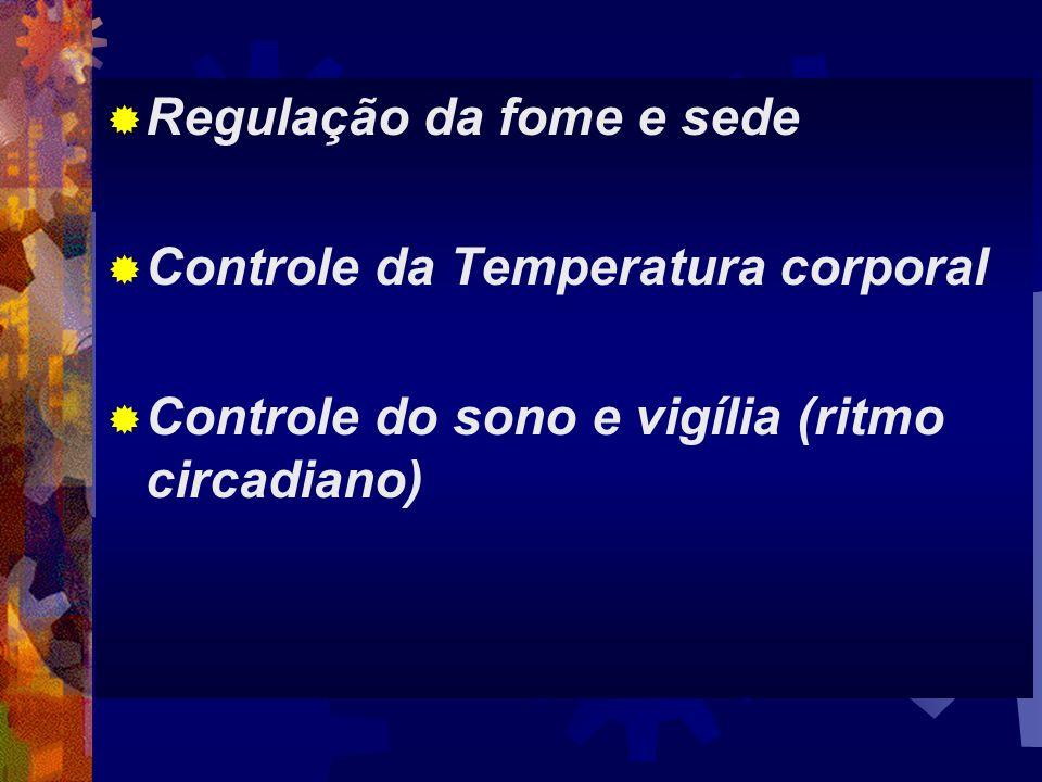Regulação da fome e sede Controle da Temperatura corporal Controle do sono e vigília (ritmo circadiano)
