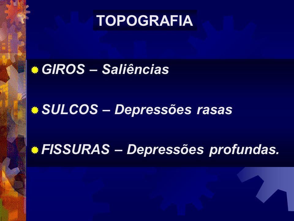 GIROS – Saliências SULCOS – Depressões rasas FISSURAS – Depressões profundas. TOPOGRAFIA