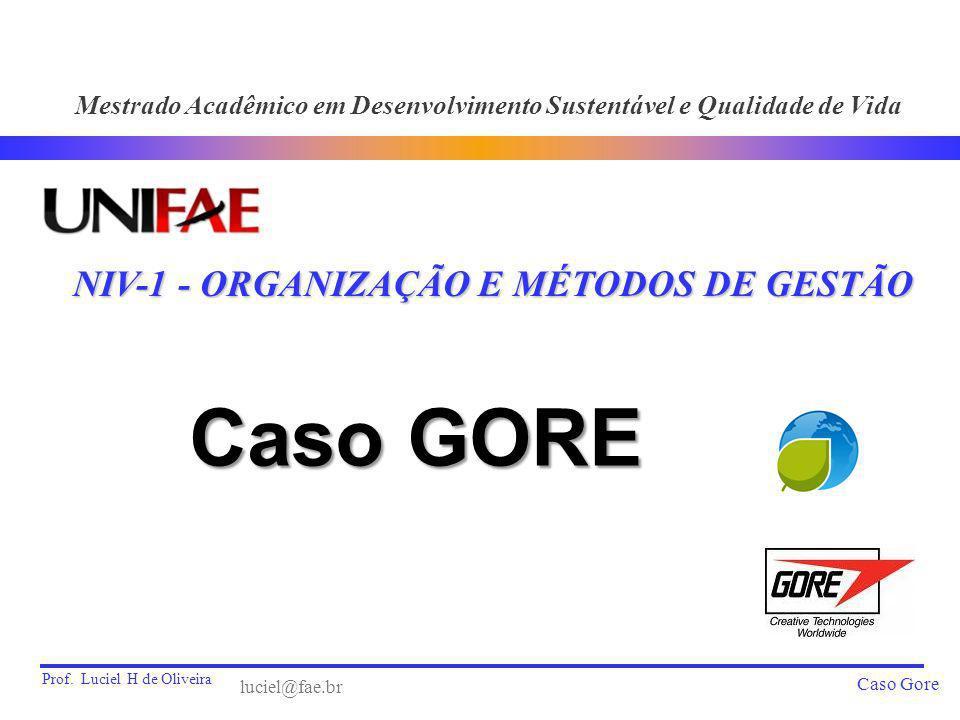 Prof. Luciel H de Oliveira Caso Gore Caso GORE NIV-1 - ORGANIZAÇÃO E MÉTODOS DE GESTÃO Mestrado Acadêmico em Desenvolvimento Sustentável e Qualidade d