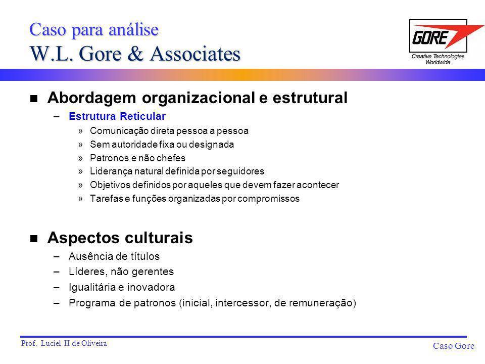 Prof. Luciel H de Oliveira Caso Gore n Abordagem organizacional e estrutural –Estrutura Reticular »Comunicação direta pessoa a pessoa »Sem autoridade