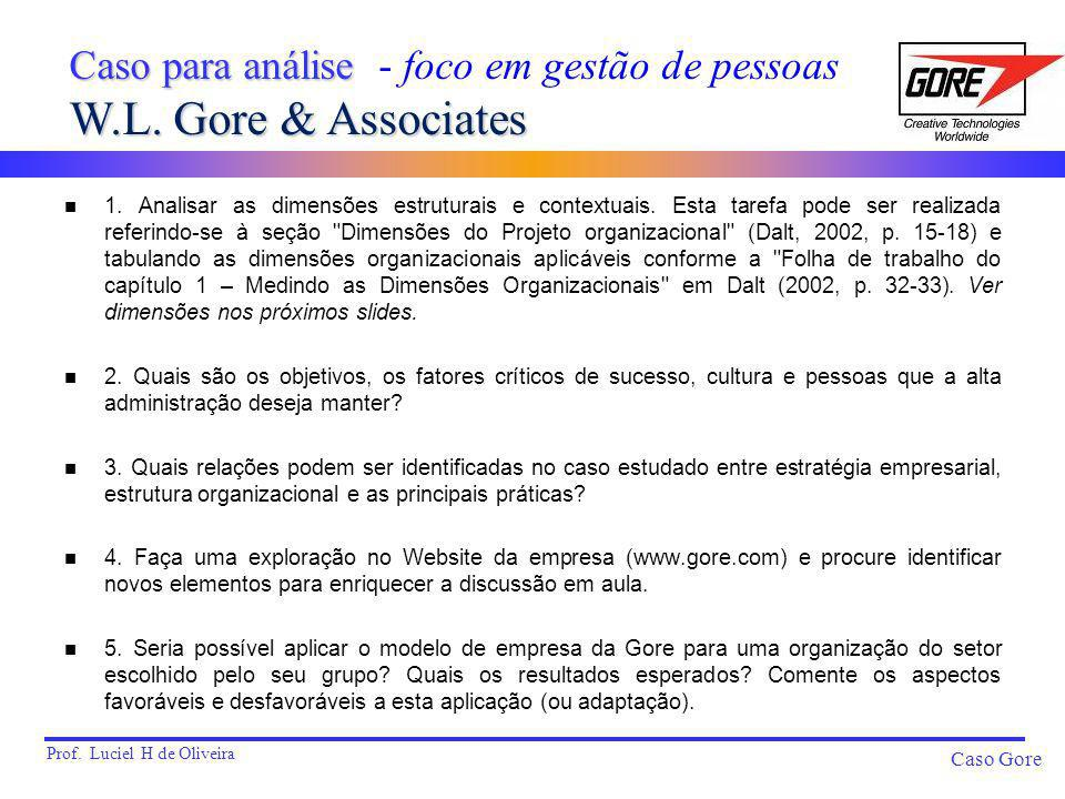 Prof. Luciel H de Oliveira Caso Gore n 1. Analisar as dimensões estruturais e contextuais. Esta tarefa pode ser realizada referindo-se à seção