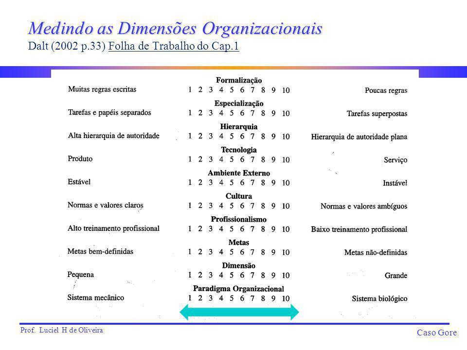 Prof. Luciel H de Oliveira Caso Gore Medindo as Dimensões Organizacionais Medindo as Dimensões Organizacionais Dalt (2002 p.33) Folha de Trabalho do C