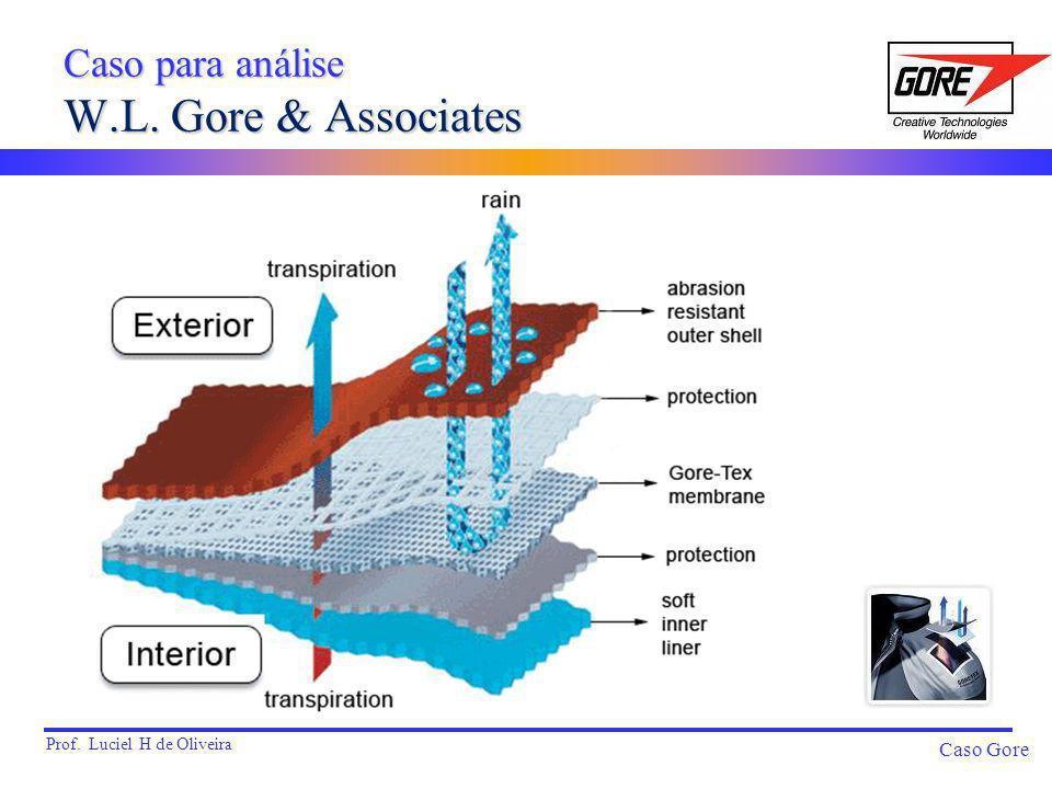 Prof.Luciel H de Oliveira Caso Gore Caso para análise W.L.