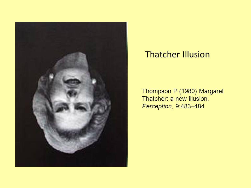 Thatcher Illusion Thompson P (1980) Margaret Thatcher: a new illusion. Perception, 9:483–484