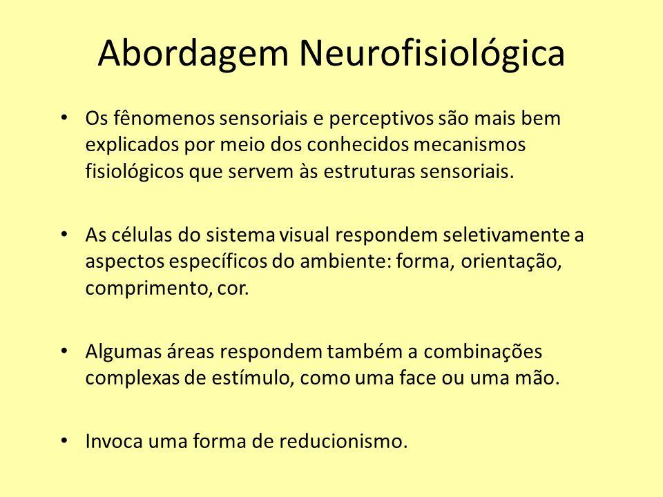 Abordagem Neurofisiológica Os fênomenos sensoriais e perceptivos são mais bem explicados por meio dos conhecidos mecanismos fisiológicos que servem às