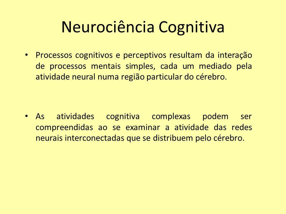 Neurociência Cognitiva Processos cognitivos e perceptivos resultam da interação de processos mentais simples, cada um mediado pela atividade neural numa região particular do cérebro.
