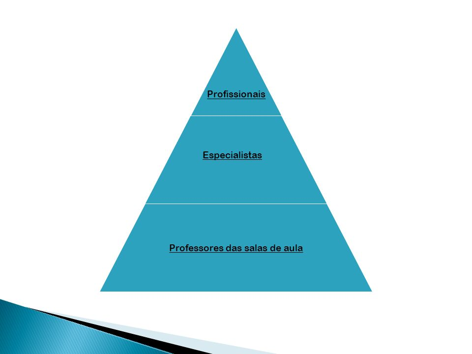 Profissionais Especialistas Professores das salas de aula Especialist as