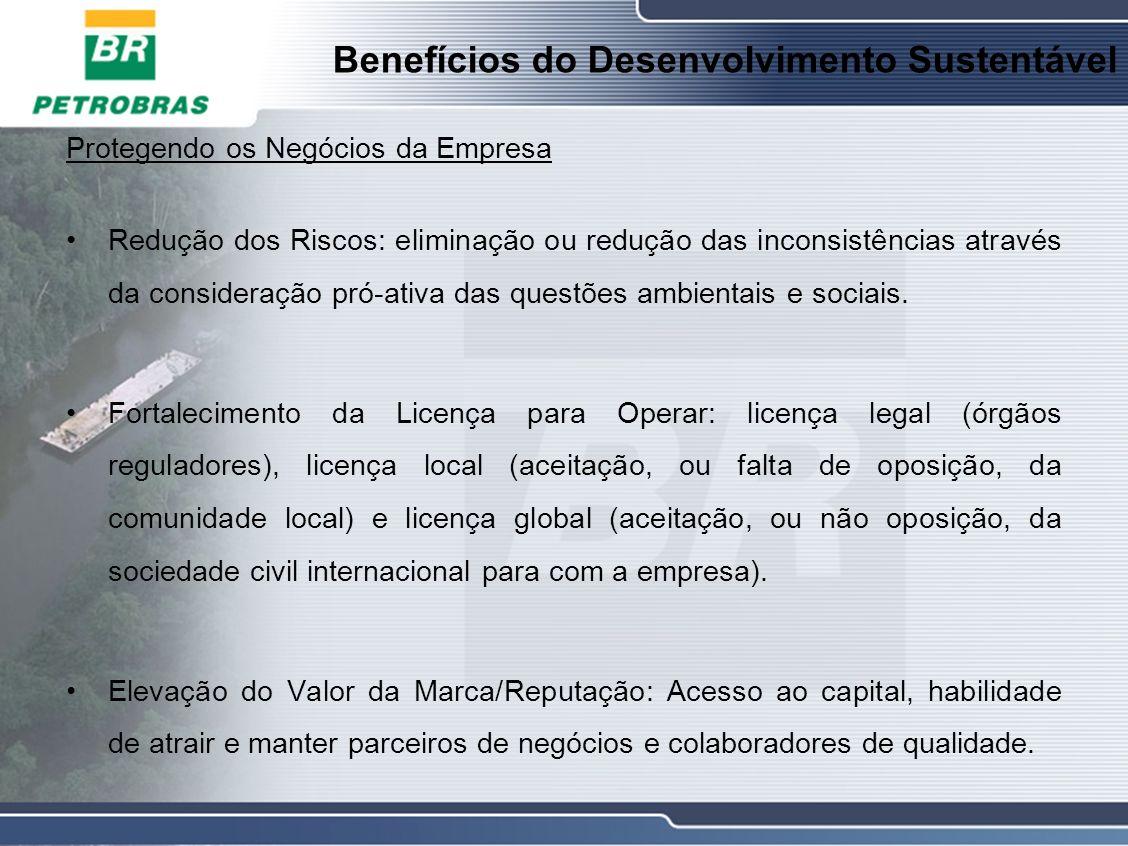 Benefícios do Desenvolvimento Sustentável Protegendo os Negócios da Empresa Redução dos Riscos: eliminação ou redução das inconsistências através da consideração pró-ativa das questões ambientais e sociais.