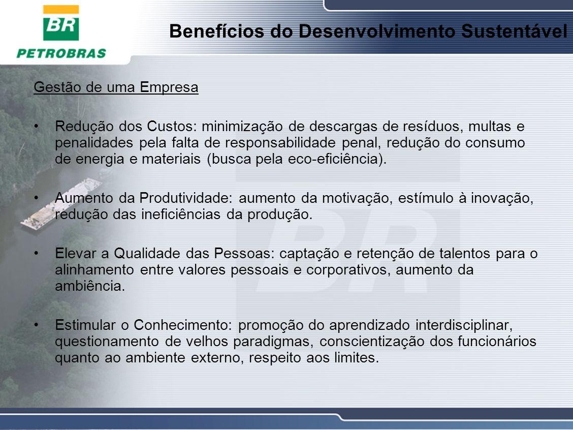 Benefícios do Desenvolvimento Sustentável Gestão de uma Empresa Redução dos Custos: minimização de descargas de resíduos, multas e penalidades pela falta de responsabilidade penal, redução do consumo de energia e materiais (busca pela eco-eficiência).
