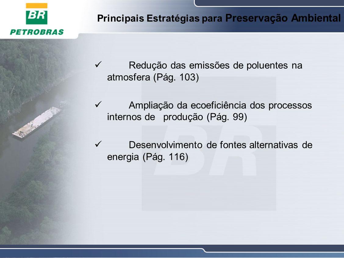 Principais Estratégias para Preservação Ambiental Redução das emissões de poluentes na atmosfera (Pág.