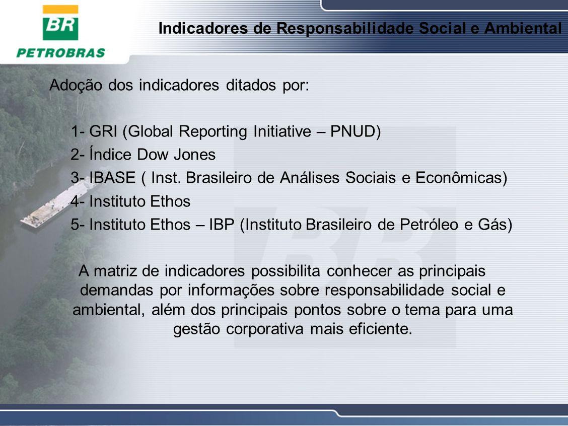 Indicadores de Responsabilidade Social e Ambiental Adoção dos indicadores ditados por: 1- GRI (Global Reporting Initiative – PNUD) 2- Índice Dow Jones 3- IBASE ( Inst.
