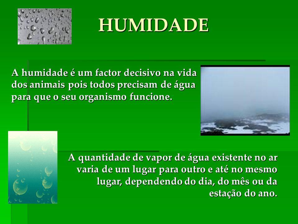 HUMIDADE A quantidade de vapor de água existente no ar varia de um lugar para outro e até no mesmo lugar, dependendo do dia, do mês ou da estação do ano.