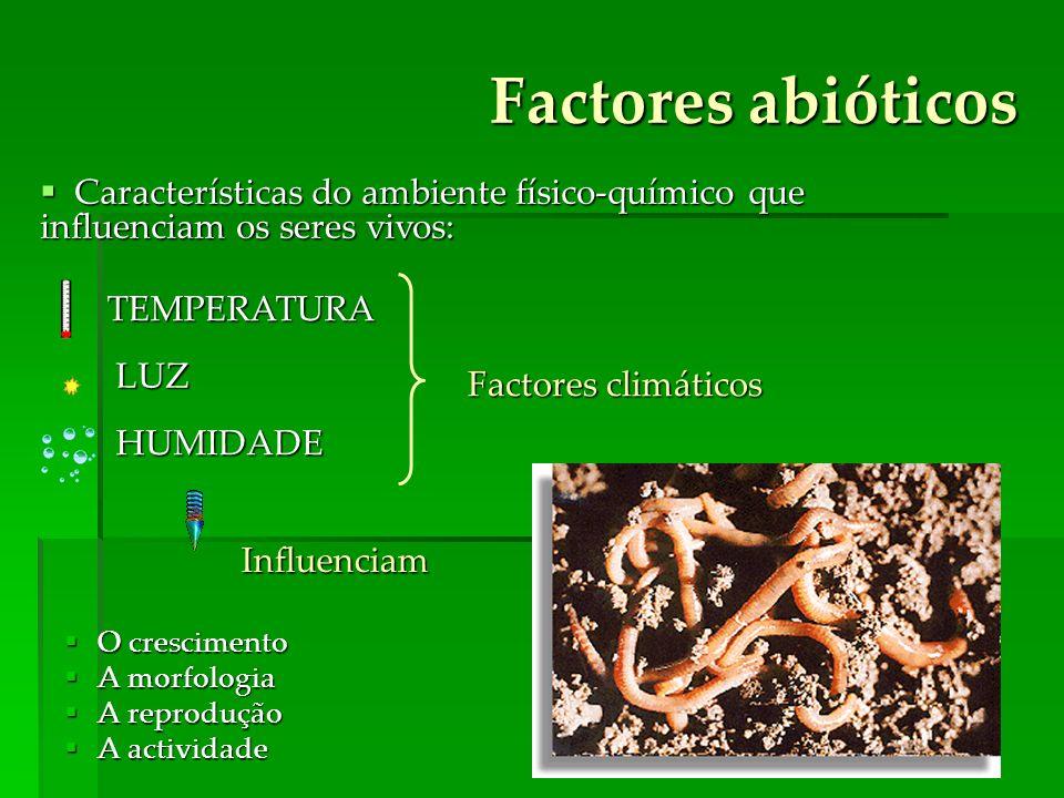 Factores abióticos O crescimento O crescimento A morfologia A morfologia A reprodução A reprodução A actividade A actividade Factores climáticos Influ