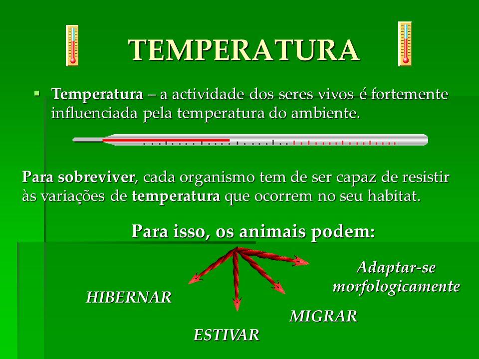Temperatura – a actividade dos seres vivos é fortemente influenciada pela temperatura do ambiente. Temperatura – a actividade dos seres vivos é fortem