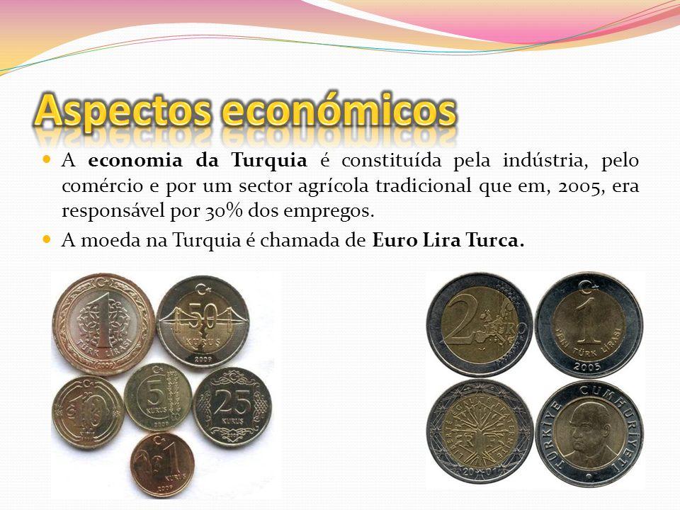 A economia da Turquia é constituída pela indústria, pelo comércio e por um sector agrícola tradicional que em, 2005, era responsável por 30% dos empre