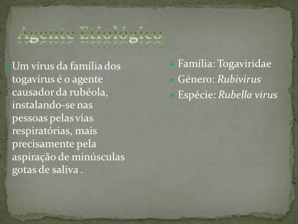 Família: Togaviridae Género: Rubivirus Espécie: Rubella virus Um vírus da família dos togavírus é o agente causador da rubéola, instalando-se nas pess