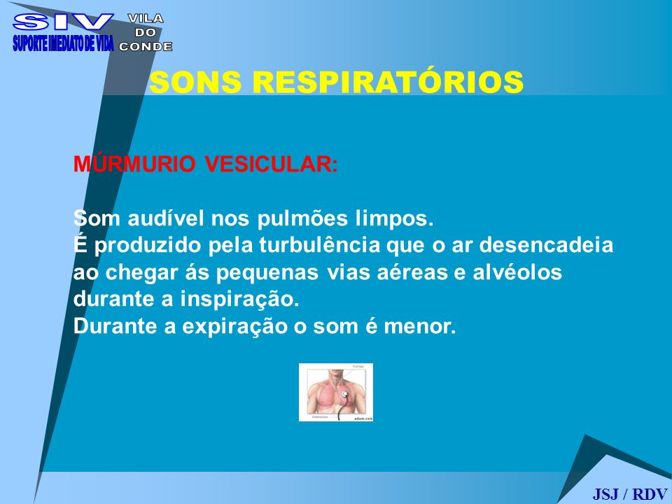 JSJ / RDV SONS RESPIRATÓRIOS MÚRMURIO VESICULAR: Som audível nos pulmões limpos. É produzido pela turbulência que o ar desencadeia ao chegar ás pequen