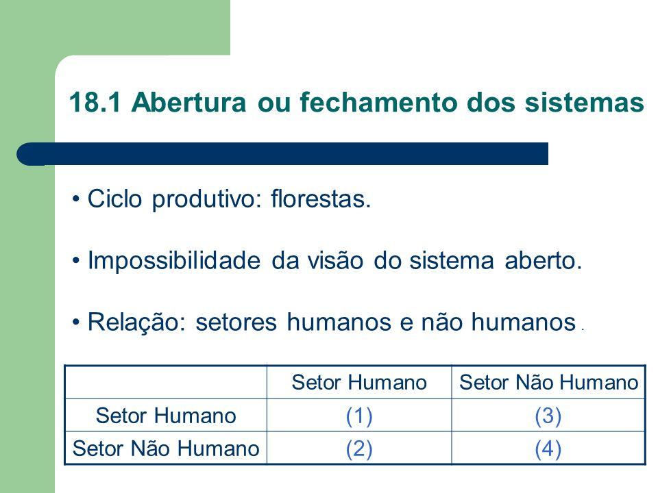 18.1 Abertura ou fechamento dos sistemas Setor HumanoSetor Não Humano Setor Humano(1)(3) Setor Não Humano(2)(4) Ciclo produtivo: florestas. Impossibil