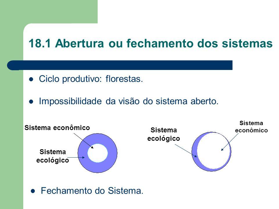 18.1 Abertura ou fechamento dos sistemas Ciclo produtivo: florestas. Impossibilidade da visão do sistema aberto. Sistema econômico Sistema ecológico S