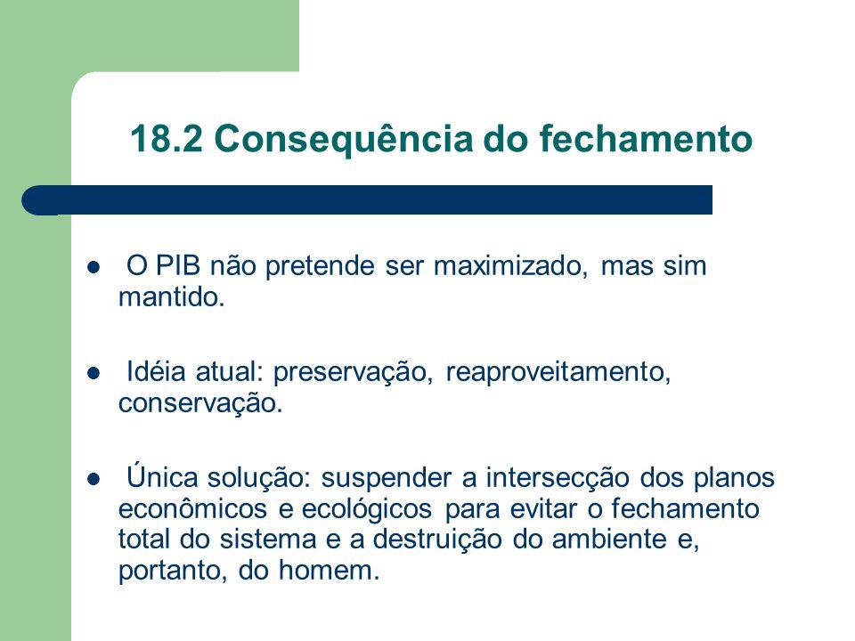 18.2 Consequência do fechamento O PIB não pretende ser maximizado, mas sim mantido. Idéia atual: preservação, reaproveitamento, conservação. Única sol