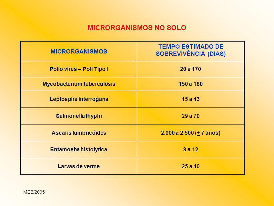 MICRORGANISMOS NO SOLO MEB/2005 MICRORGANISMOS TEMPO ESTIMADO DE SOBREVIVÊNCIA (DIAS) Pólio vírus – Poli Tipo I20 a 170 Mycobacterium tuberculosis150