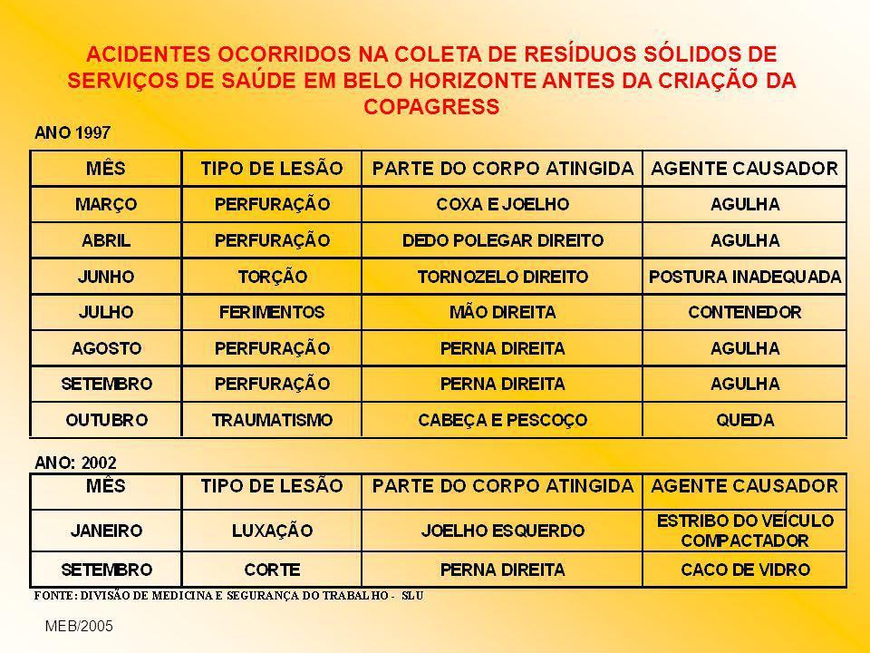 ACIDENTES OCORRIDOS NA COLETA DE RESÍDUOS SÓLIDOS DE SERVIÇOS DE SAÚDE EM BELO HORIZONTE ANTES DA CRIAÇÃO DA COPAGRESS MEB/2005