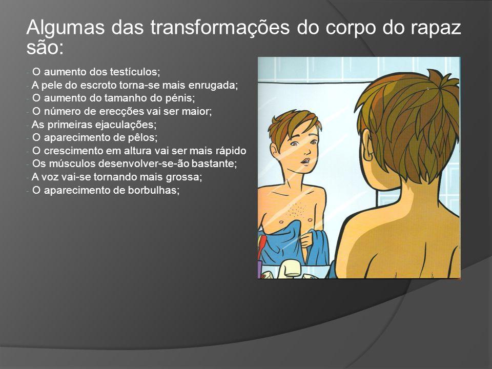 Algumas das transformações do corpo do rapaz são: - O- O aumento dos testículos; - A- A pele do escroto torna-se mais enrugada; - O- O aumento do tama
