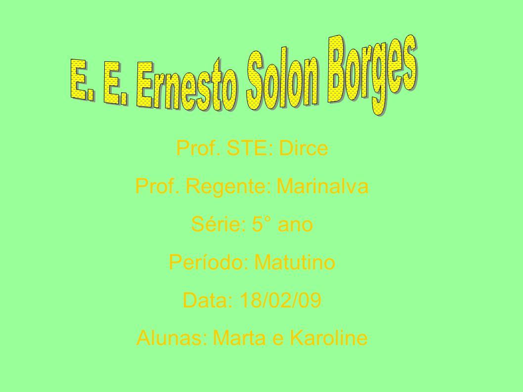 Prof. STE: Dirce Prof. Regente: Marinalva Série: 5° ano Período: Matutino Data: 18/02/09 Alunas: Marta e Karoline