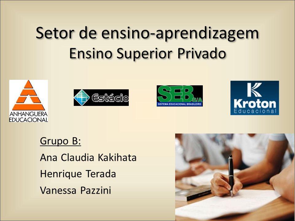 Setor de ensino-aprendizagem Ensino Superior Privado Grupo B: Ana Claudia Kakihata Henrique Terada Vanessa Pazzini