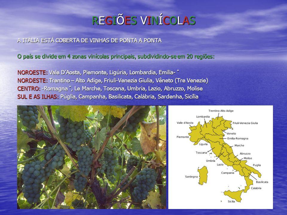 REGIÕES VINÍCOLASREGIÕES VINÍCOLASREGIÕES VINÍCOLASREGIÕES VINÍCOLAS A ITÁLIA ESTÁ COBERTA DE VINHAS DE PONTA A PONTA O país se divide em 4 zonas viní