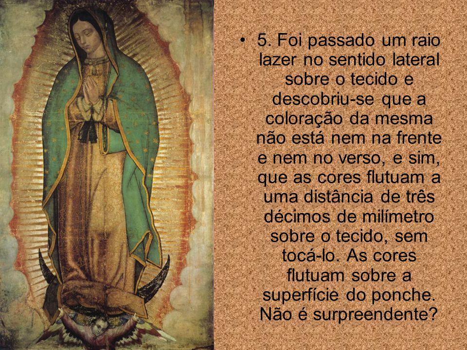 Para finalizar, vejam outros 3 fatores surpreendentes: 1. Guadalupe significa no idioma indígena: amassa a cabeça da serpente .