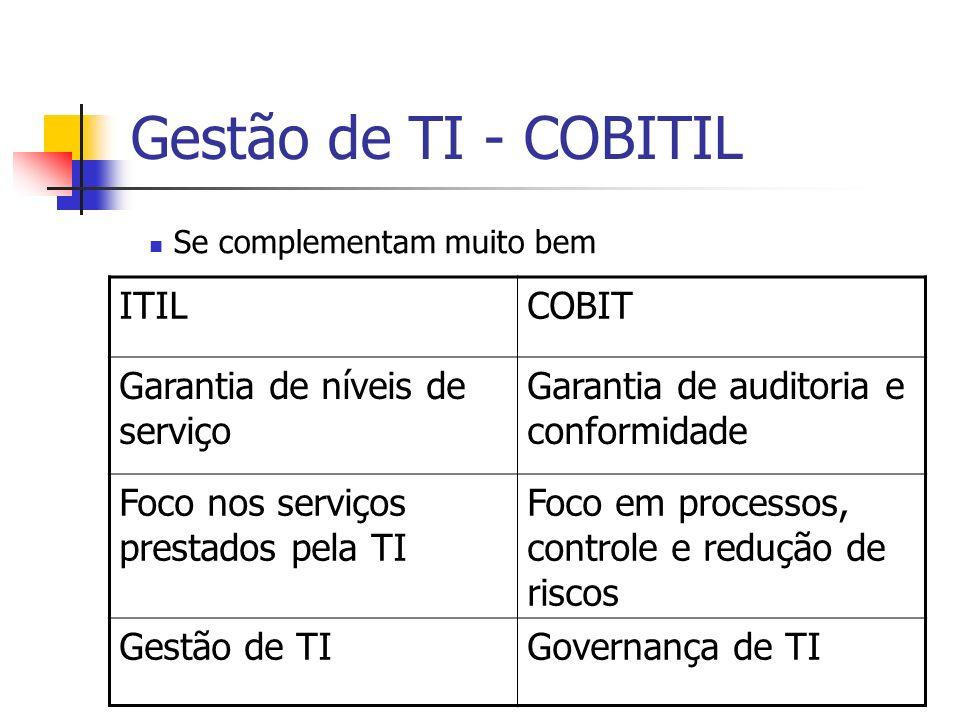Governo Eletrônico (e-gov) Novos termos: G2G – governo para governo (governo interagindo com governo, geralmente outras esferas ou órgãos) G2B – governo para empresas (governo interagindo com empresas) G2C – governo para cidadão (governo interagindo com cidadãos)