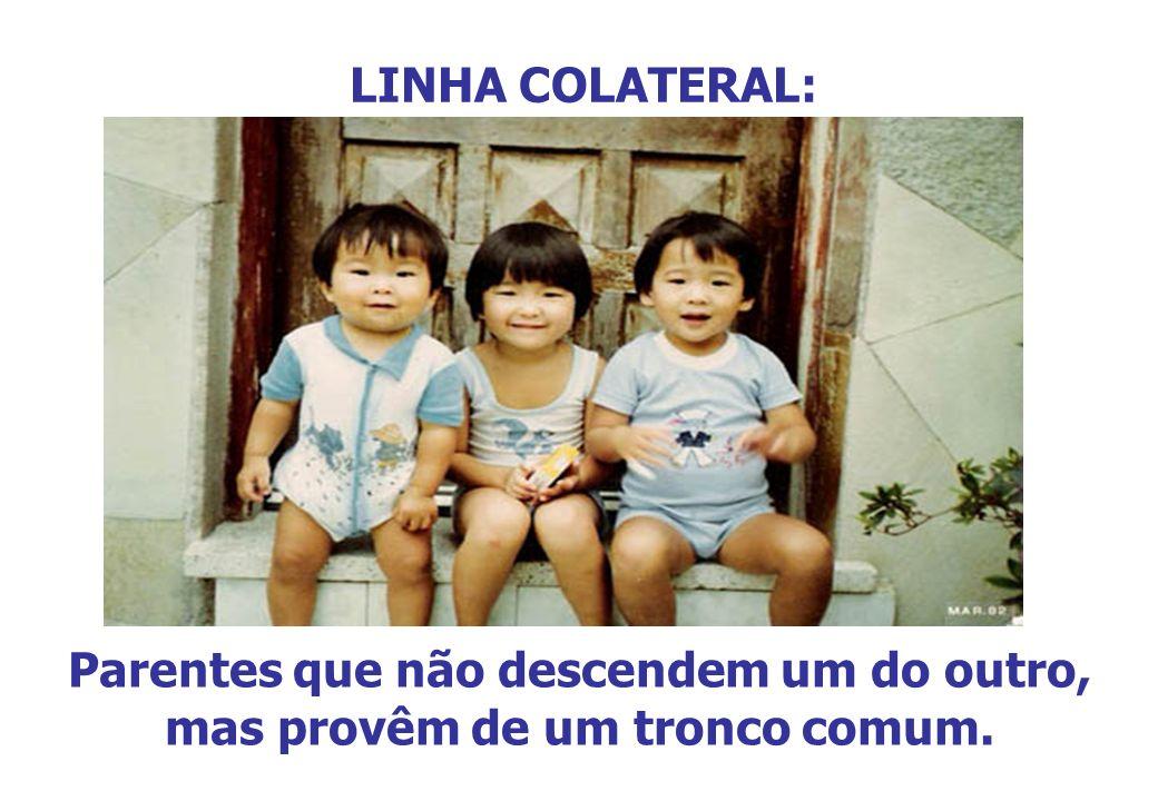 LINHA COLATERAL: Parentes que não descendem um do outro, mas provêm de um tronco comum.