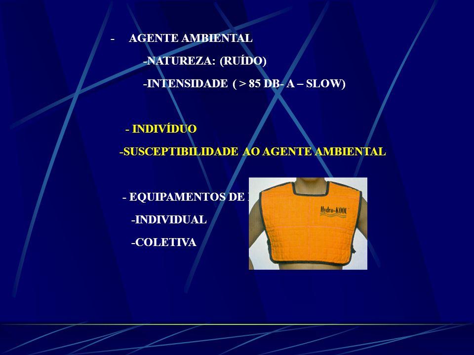 - AGENTE AMBIENTAL -NATUREZA: (RUÍDO) -INTENSIDADE ( > 85 DB- A – SLOW) - INDIVÍDUO -SUSCEPTIBILIDADE AO AGENTE AMBIENTAL - EQUIPAMENTOS DE PROTEÇÃO -
