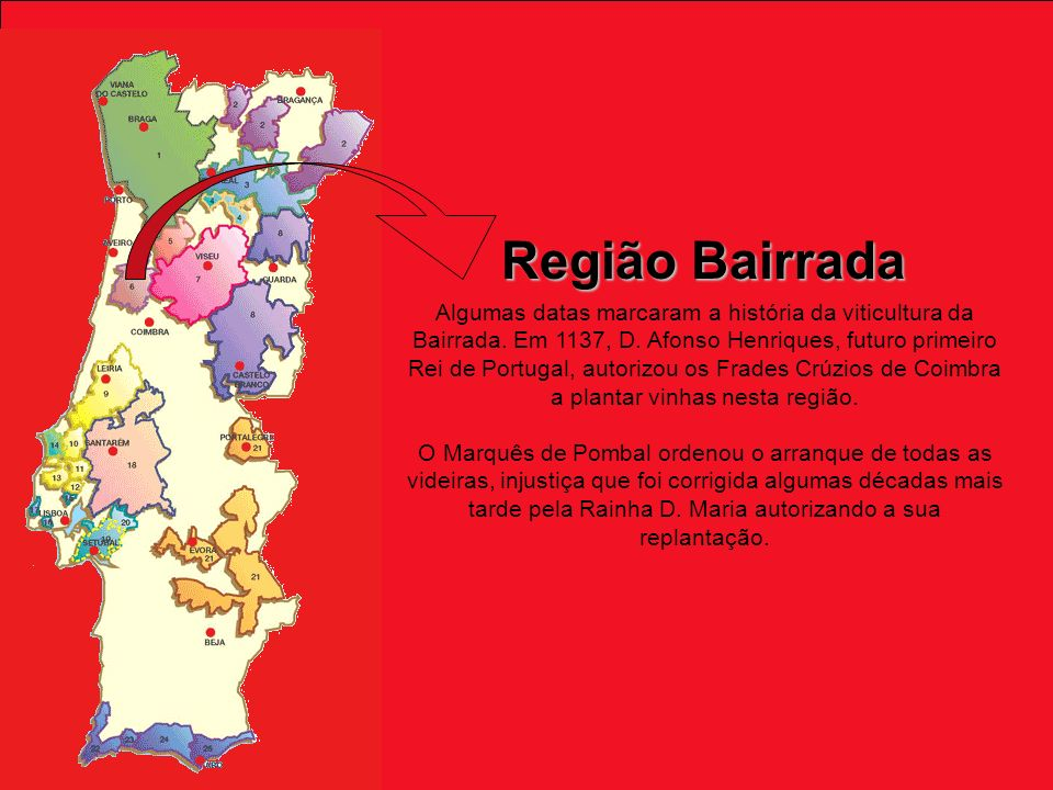 Algumas datas marcaram a história da viticultura da Bairrada.