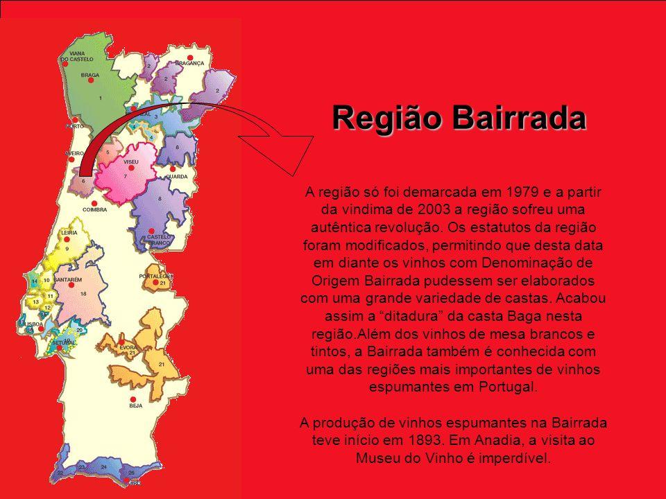 A região só foi demarcada em 1979 e a partir da vindima de 2003 a região sofreu uma autêntica revolução.