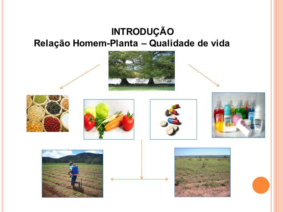 Identificação estrutural dos constituintes químicos isolados das folhas de P.