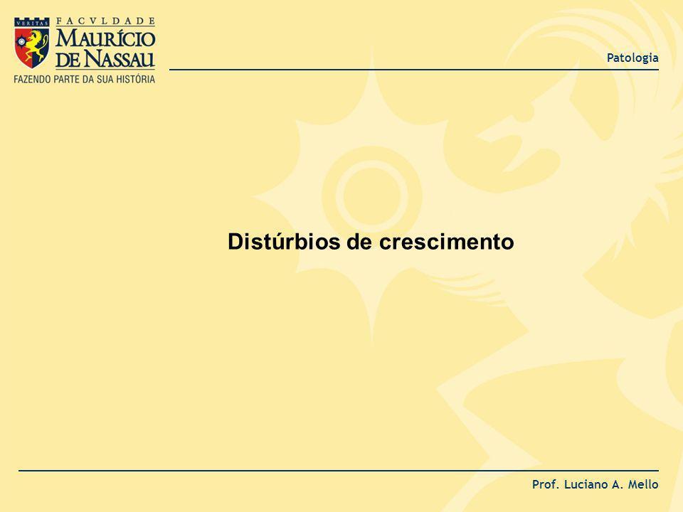 Patologia Prof. Luciano A. Mello Distúrbios de crescimento