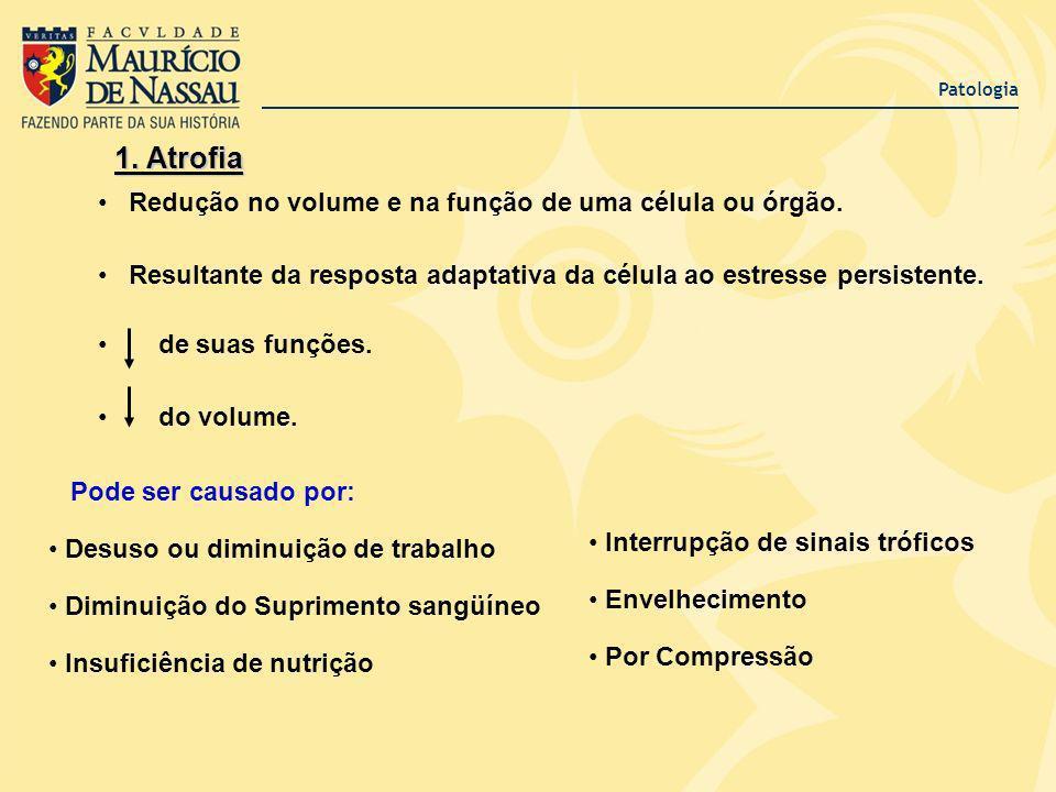 Patologia 1. Atrofia Redução no volume e na função de uma célula ou órgão. Resultante da resposta adaptativa da célula ao estresse persistente. de sua