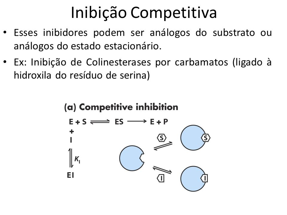 Inibição Competitiva Esses inibidores podem ser análogos do substrato ou análogos do estado estacionário. Ex: Inibição de Colinesterases por carbamato