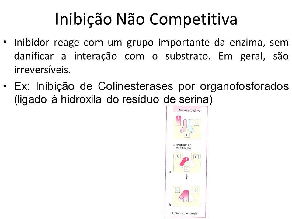 Inibição Não Competitiva Inibidor reage com um grupo importante da enzima, sem danificar a interação com o substrato. Em geral, são irreversíveis. Ex: