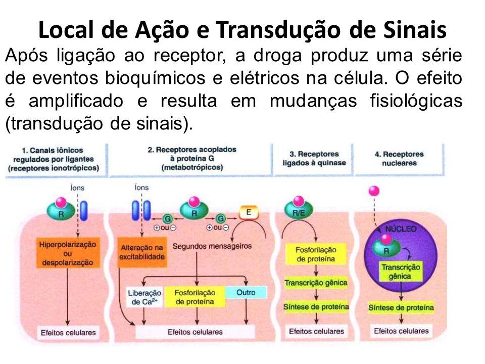 Local de Ação e Transdução de Sinais Após ligação ao receptor, a droga produz uma série de eventos bioquímicos e elétricos na célula. O efeito é ampli