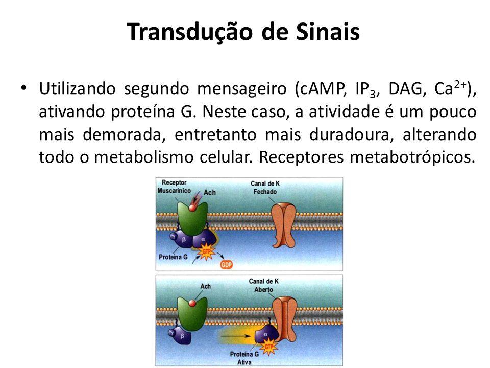 Transdução de Sinais Utilizando segundo mensageiro (cAMP, IP 3, DAG, Ca 2+ ), ativando proteína G. Neste caso, a atividade é um pouco mais demorada, e